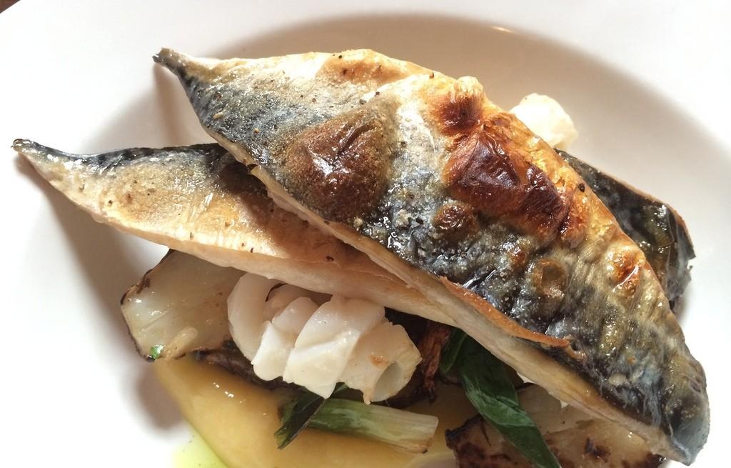 Makrela z kalmarami w miksie pietruszkowym